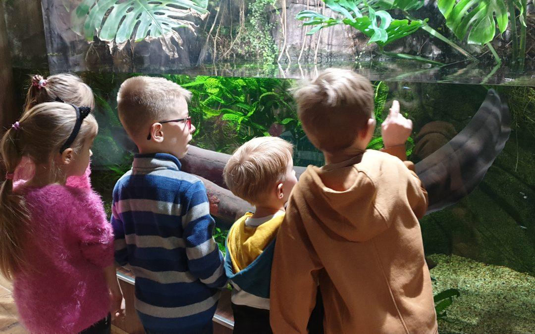 Lekcja poznawcza w Akwarium Gdyńskim