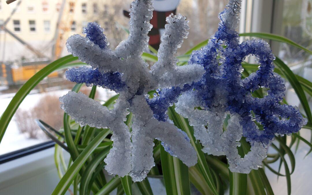 Tajemnice śniegowej gwiazdki