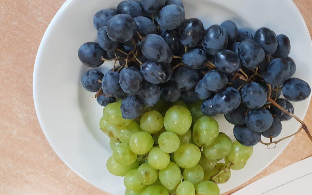Dzień winogrona w świetlicy szkolnej:)